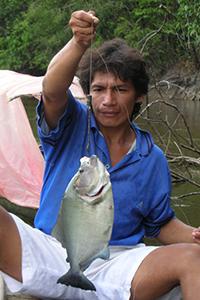 piranha peche